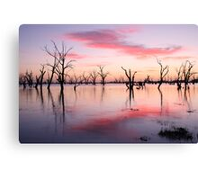 Lake Victoria Dawn, Australia Canvas Print