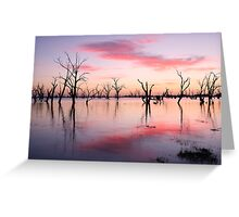 Lake Victoria Dawn, Australia Greeting Card