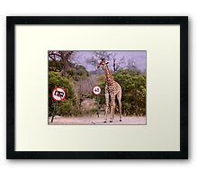 """""""IS THIS A EDUCATIONAL SIGN"""" am I taller? my speed should be OK ! Framed Print"""