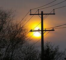 Light on a Wire by Larry Llewellyn