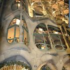 Casa Batllo by styles