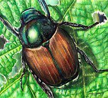 Japanese Beetle on Leaf by ShanaRoweArt