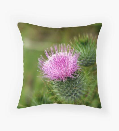 Scotch Thistle Throw Pillow