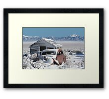 Cold And Lonely Framed Print