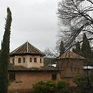Alhambra, Granada by styles
