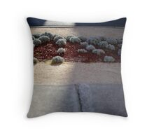 """Ephphatha!"" Throw Pillow"