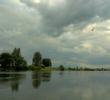 River IJssel by dutchlandscape