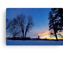Heart of Assiniboine Park Canvas Print