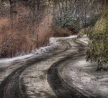 The hidden road by Mike  Savad