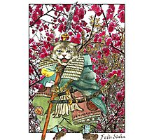 A Halfing Samurai Cat with a Spear and 2 Swords Photographic Print