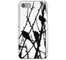 Wagtail Roost I iPhone Case/Skin