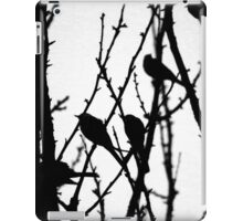 Wagtail Roost I iPad Case/Skin