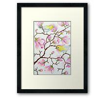 White-eyes on magnolia tree Framed Print