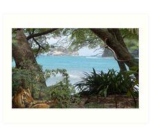 1110-Bengal Shoreline Habitat Art Print