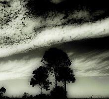 Orton Florida sky  by Isa Rodriguez