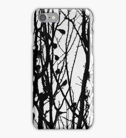 Wagtail Roost IV iPhone Case/Skin
