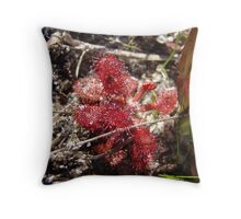 Drosera Rotundifolia Throw Pillow