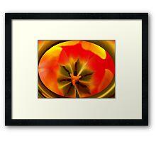 Inside the Tulip Framed Print