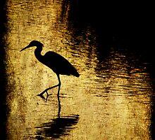 Bayou Stepping by Jonicool