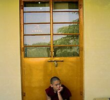 contemplation. northern india by tim buckley | bodhiimages