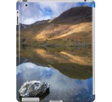 Double Delight iPad Case/Skin