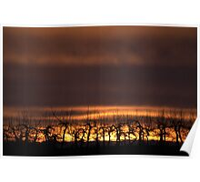 Sunset in coutryside Poster