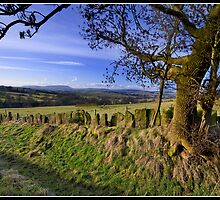 Pendle Hill views from Wycoller by Shaun Whiteman