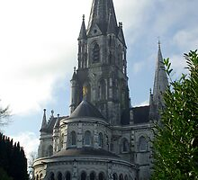 St Finbars Cathedral Cork by David O'Riordan