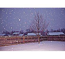 Snow Yard Photographic Print