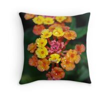 Marmelade bush flower Throw Pillow