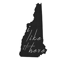I Like it Here New Hampshire by surgedesigns