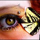 Wings of a Butterfly by Savina