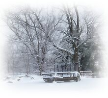Winter Wonderland 1 by PhotogbyDana