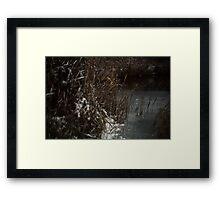 Sights Of Nature Framed Print