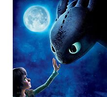 How To Train Your Dragon by plasticham