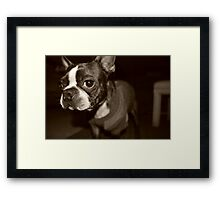 Mr. Muscles Framed Print