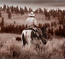 Cowboy by photogeek82