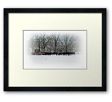 Cows in Winter Field Framed Print