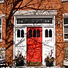 Red Door by Shulie1