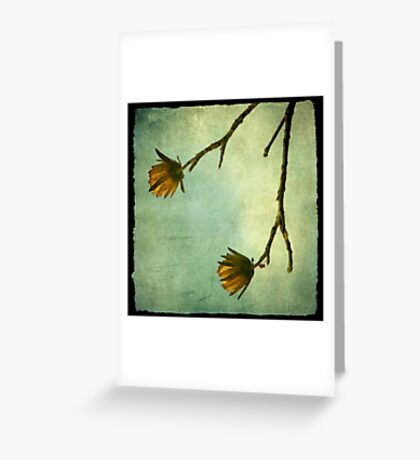 Tree Flowers Greeting Card