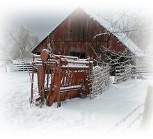 Winter Barn by PhotogbyDana