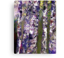 Birches At Dusk Canvas Print