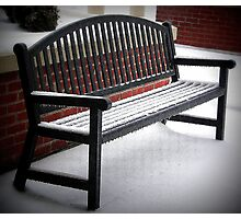 Benched By Ice Photographic Print