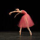 Elegance by EmmaLeigh