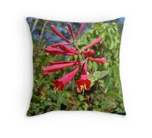 Trumpet Honeysuckle (Lonicera sempervirens) Throw Pillow