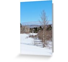 Spring is a Long Way Off Greeting Card