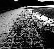 rear view by Alexandr Grichenko