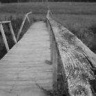 Broken Bridges by Eryn Nickerson