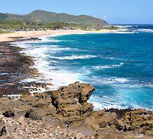 Blue Hawaii by Cheryl  Lunde
