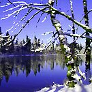 Painted Winter Reflections by Tori Snow